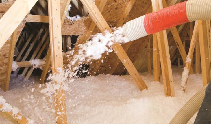 Борьба с вредителями в строительной древесине