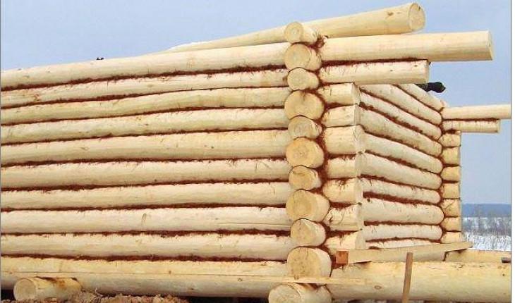 Инструкция по сборке сруба из оцилиндрованного бревна