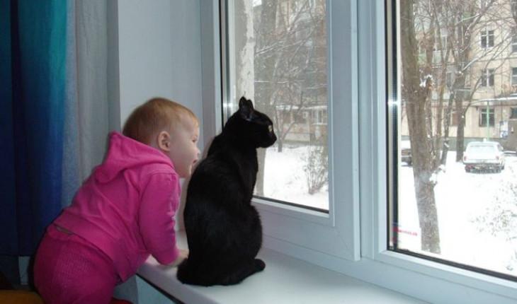 Вам привезли новые окна