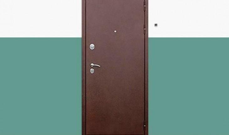 Советы по быстрому обновлению входной двери