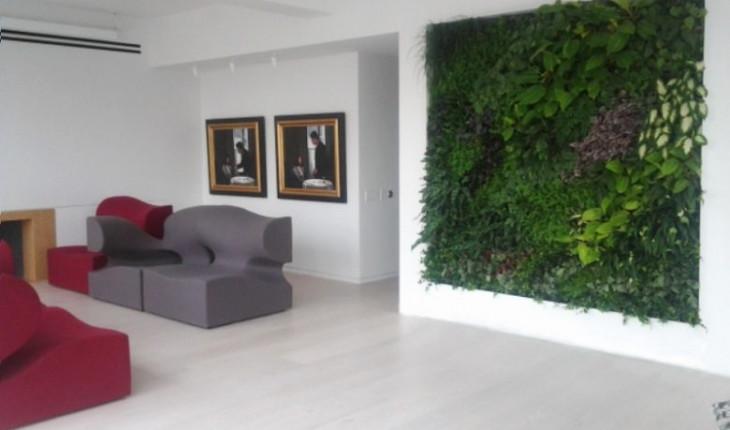 Трава в квартире