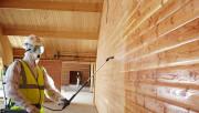 Как защитить деревянный дом от вредных насекомых