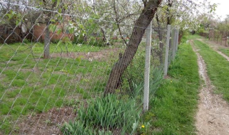 Недорогой забор из сетки рабицы