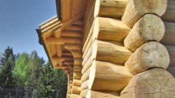 Преимущества и недостатки домов из сруба