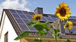 Преимущества солнечной батареи для тех, кто не вписывается в новую социальную норму по электроэнергии